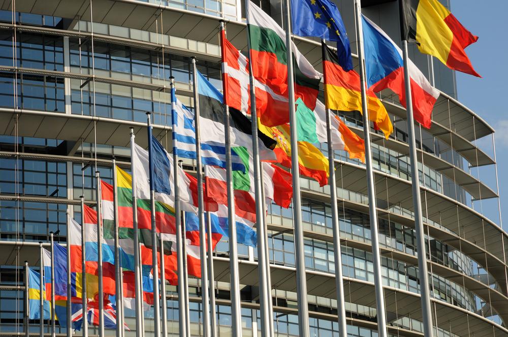 התפקיד המרכזי של ממשלות אירופה במימון ארגונים לא ממשלתיים