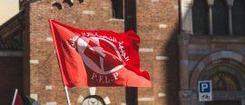 pflp-flag
